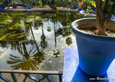 Jardines en Marrakech